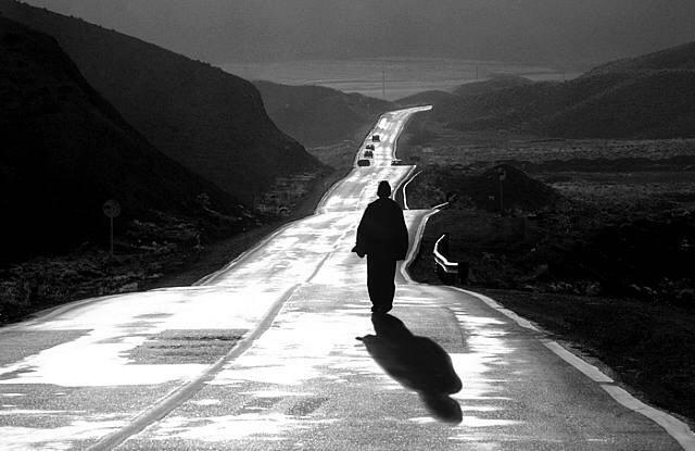 عکس های عباس کیارستمی - مجید کاویان مهر